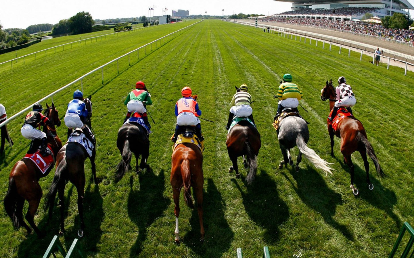 Horse Racing Betting made simple