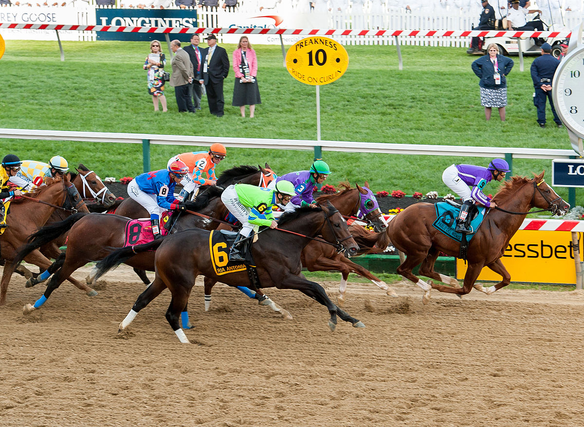 Different Types Of Horse Racing Betting