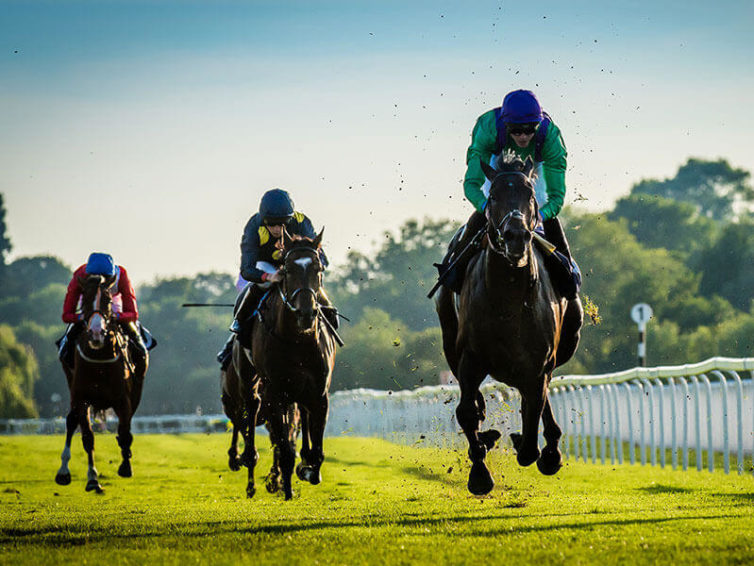 Top Annual Horse Races