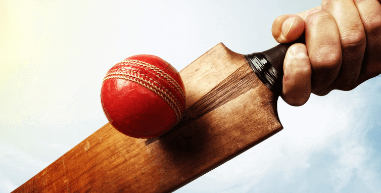 The Beginner's Guide to Popular Cricket Bets